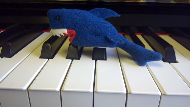 Ikea shark puppet on piano keys in Didsbury Macnhester
