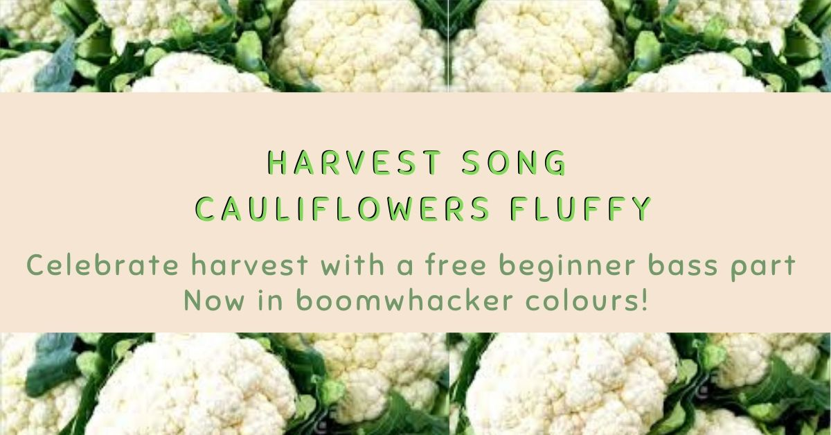 Cauliflowers Fluffy Didsbury Piano